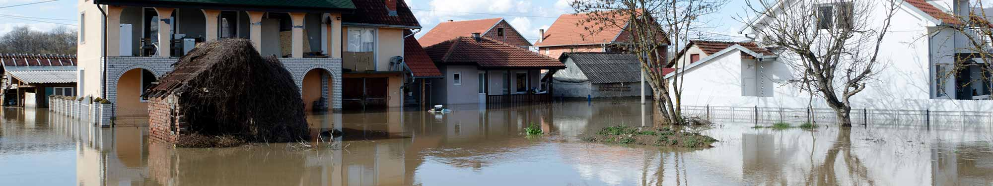 National Flood Insurance Program   SD DPS